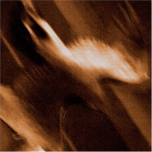 AGALLOCH : Ashes Against the Grain