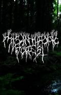 MISANTHROPIC FOREST: Demo 2017